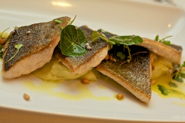 Seared Rainbow Trout with Potato Leek Puree