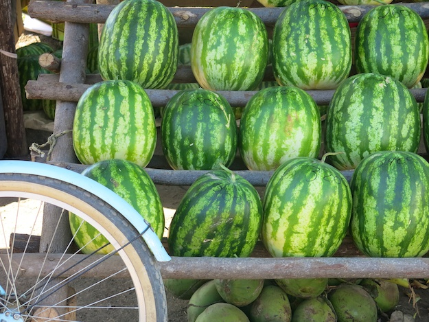 watermelon and bike