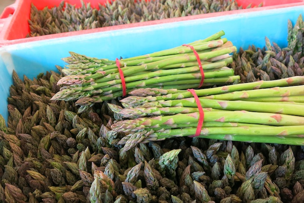 asparagus picked