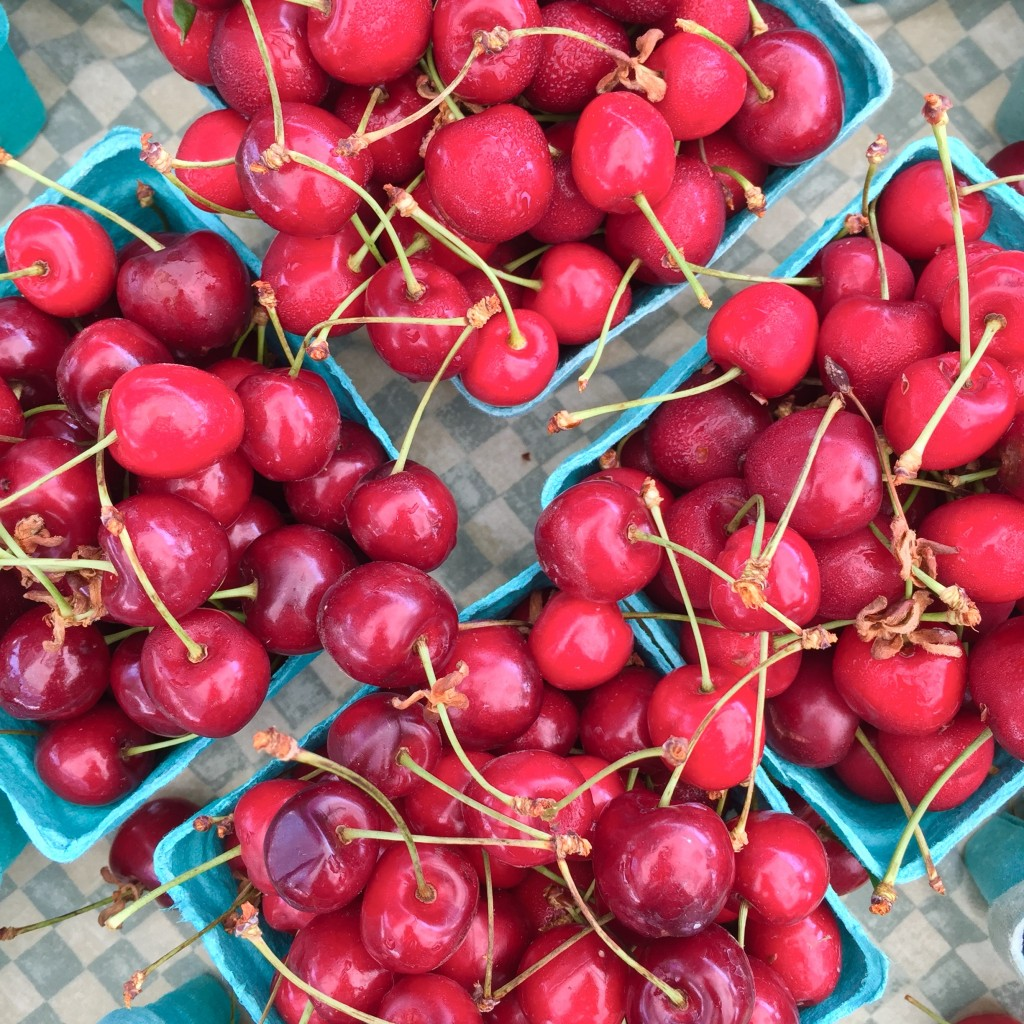 Photo: Liz Rueven, Sweet Cherries, Woodland Farm, CT
