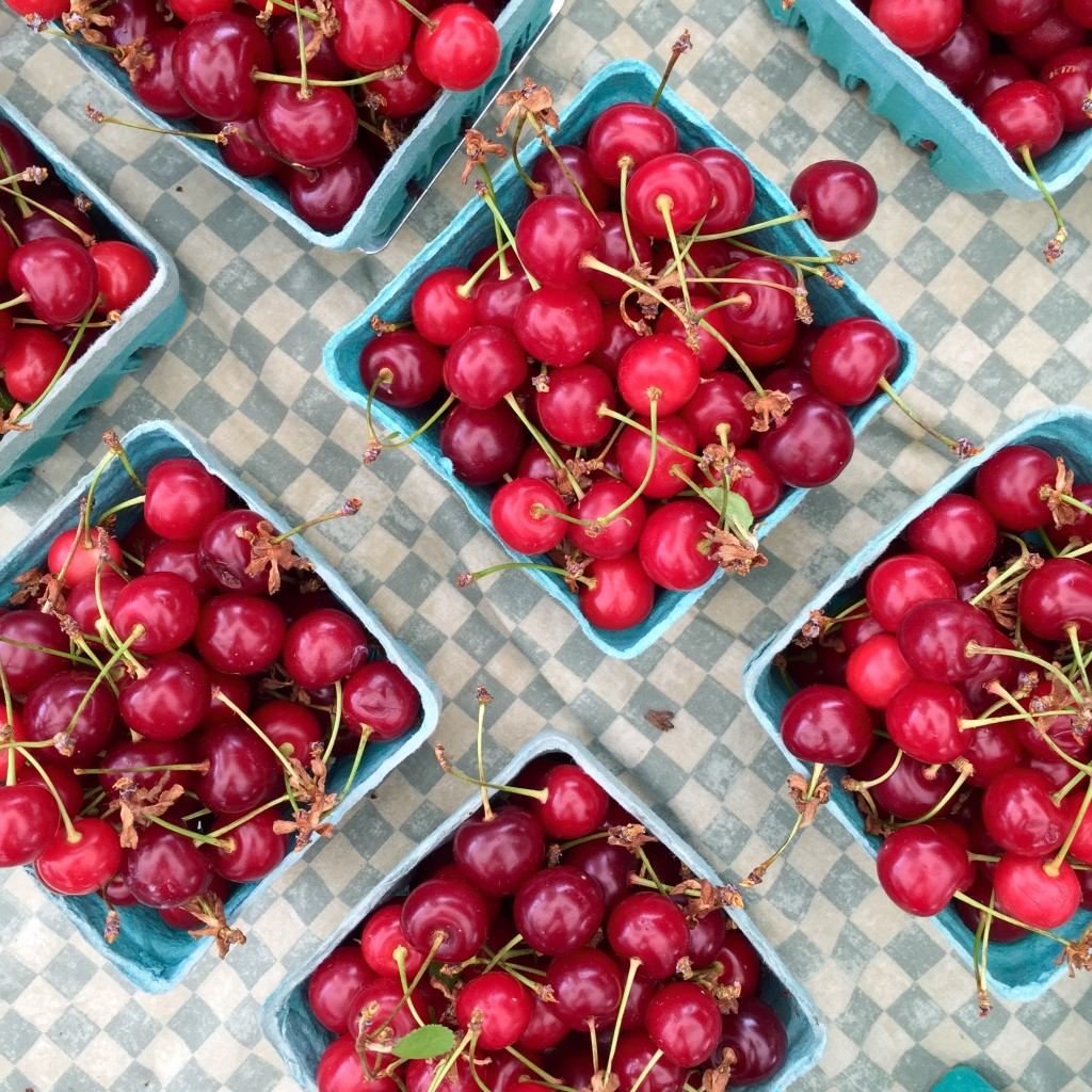Photo: Liz Rueven, Sour Cherries, Woodland Farm, CT