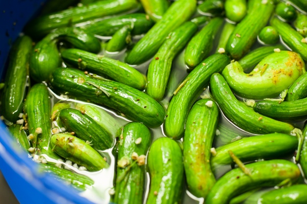 Our Favorite Pickles & Where to Find Them