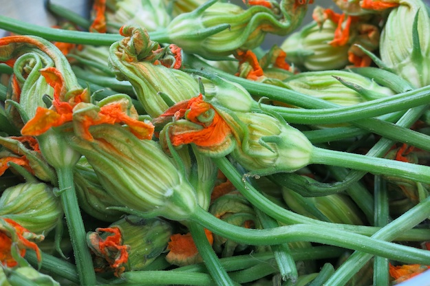Peak of Summer with Stuffed Zucchini Blossoms
