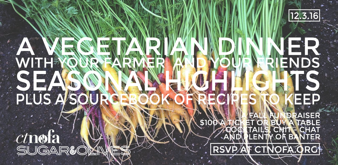 Join us! Vegetarian Autumn Harvest Dinner in CT