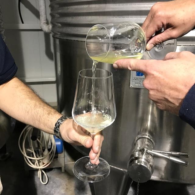 israeli wine kosherlikeme