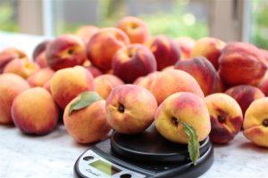 peach jam - Kosher Like Me