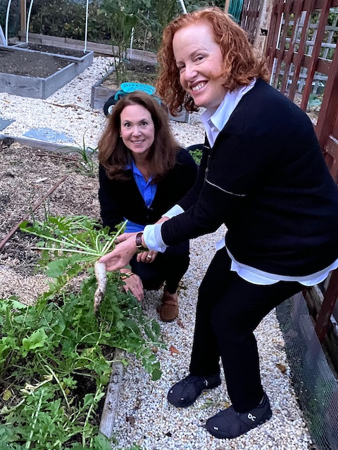 Autumn veggies in CT Kosher Like Me Sukkot